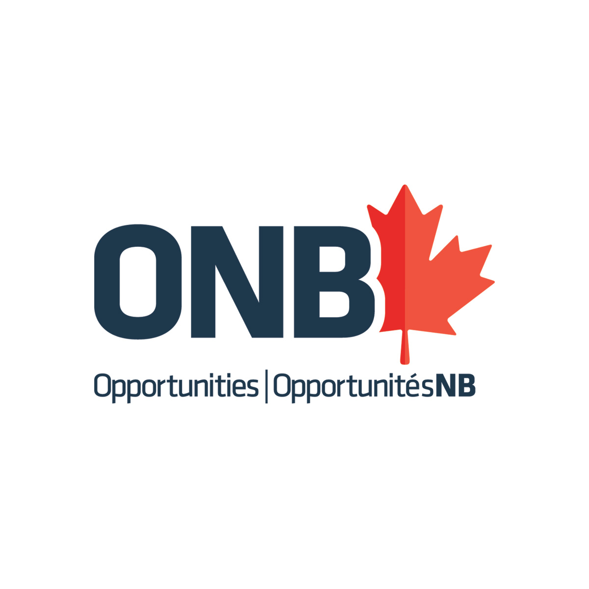Homepage opportunities new brunswick onb news a year in review 2017 2018 publicscrutiny Images